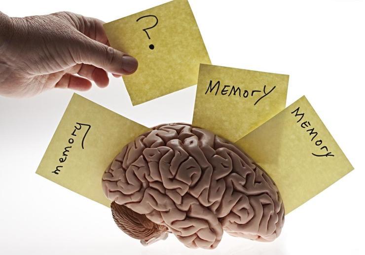 从NLP终生学习开始,谈谈深度学习中记忆结构的设计和使用