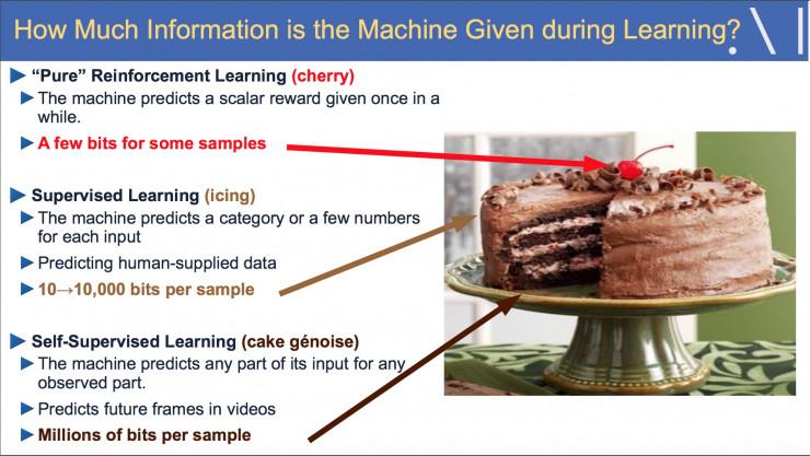 自监督学习,如何从数据困境中拯救深度学习?