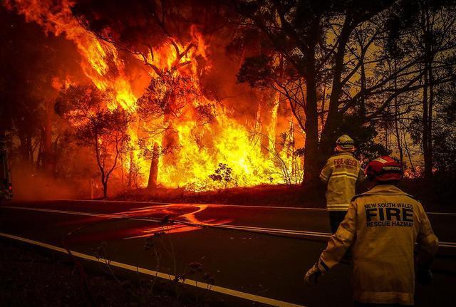 蝗灾、山火肆虐,贝佐斯投 100 亿美元抗击气候变化