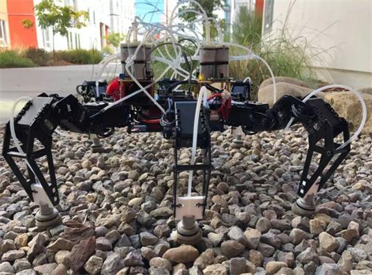 美国加州大学发明装有咖啡渣的足式机器人!