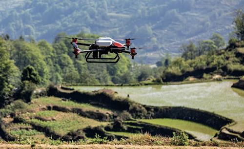 未来种地会像打游戏一样上瘾?李开复:人工智能会率先在农业领域崛起